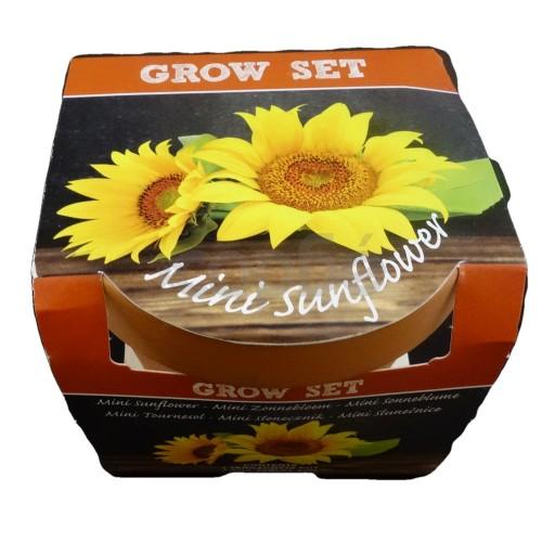 Саксия със семена и почва
